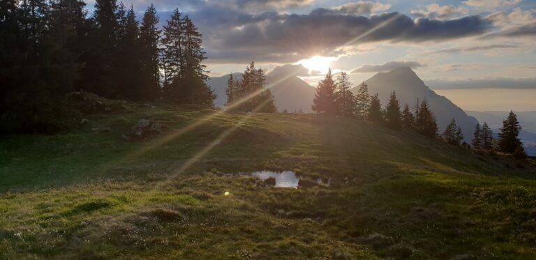 naturwesen heilsteine bosensu.ch aurareinigung